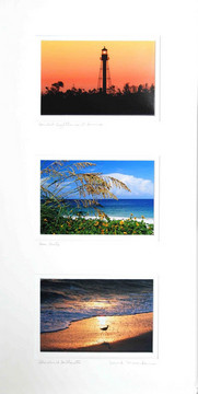 Triple Print Scenic Sanibel