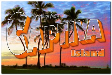 Greetings From Captiva - Palms