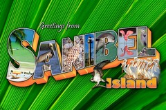 Sanibel Icons